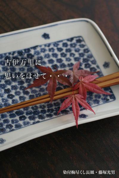 染付梅尽くし長皿(大)・藤塚光男