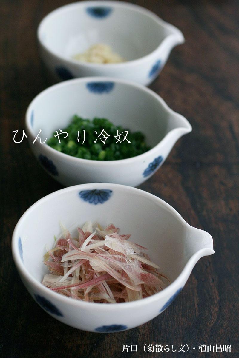 片口・菊散らし文・植山昌昭