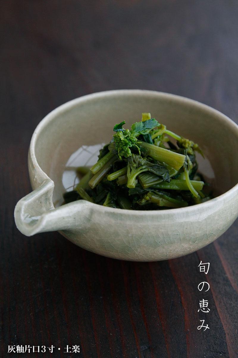 土楽・福森雅武| 和食器の作家さん