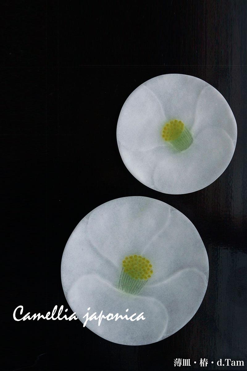 薄皿・椿・16.5cm・d.tam