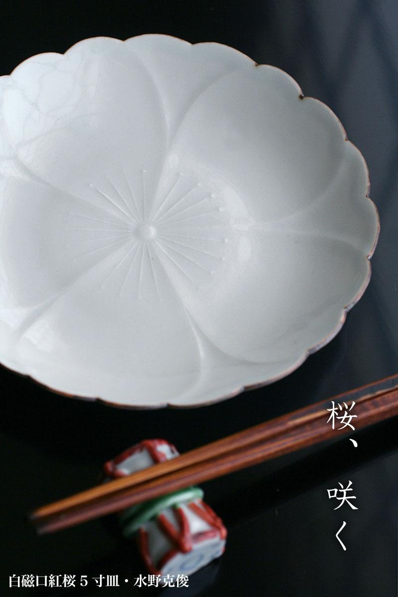 白磁口紅桜5寸皿  水野克俊|和食器の愉しみ・工芸店ようび