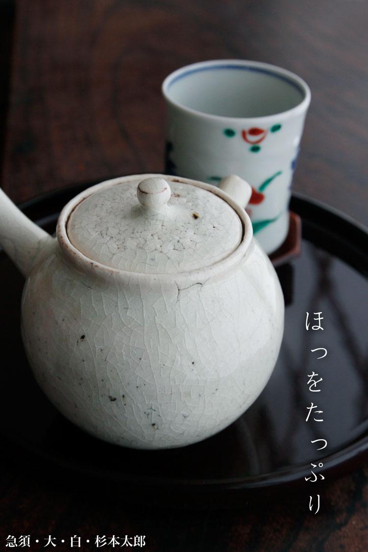 急須・大・杉本太郎|急須・土瓶