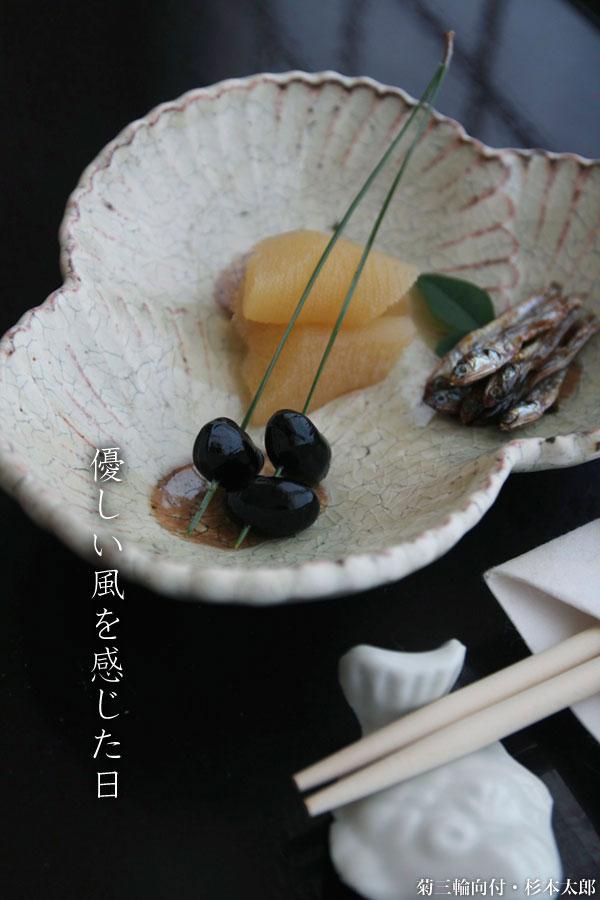 菊三輪向付・杉本太郎