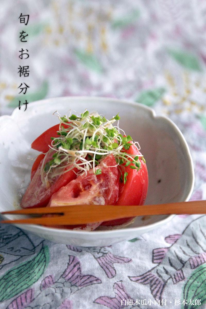 杉本太郎| 和食器の作家さん