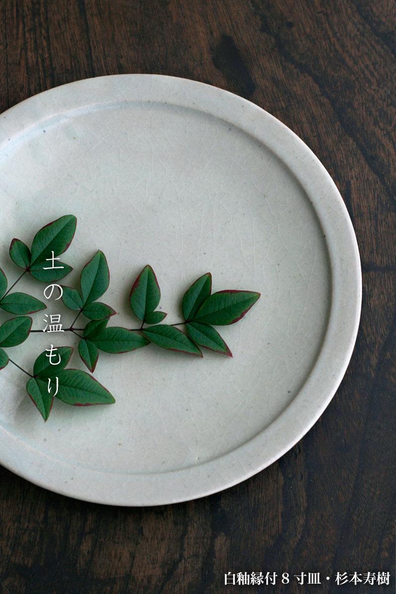 白釉縁付8寸皿・杉本寿樹|和食器の愉しみ・工芸店ようび