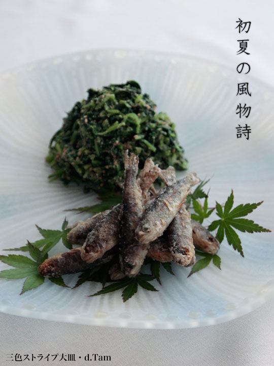 三色ストライプ大皿・d.Tam|和食器の愉しみ・工芸店ようび|初夏の夕餉(ゆうげ)