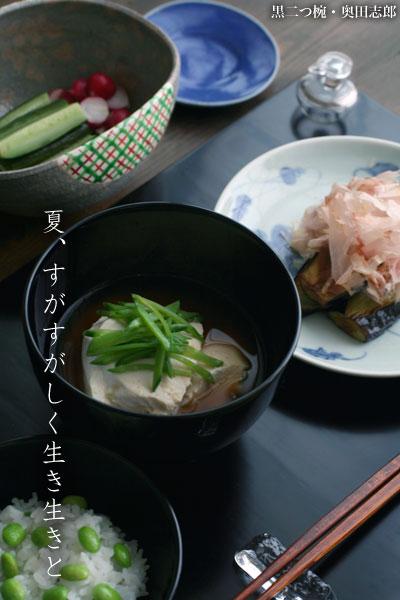 【一汁一菜】すくい豆腐、さやえんどう
