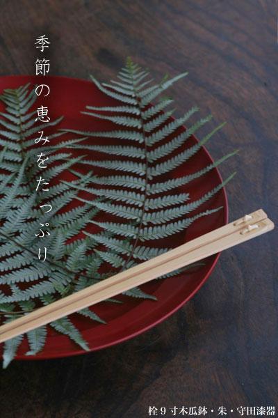栓9寸木瓜鉢・朱・守田漆器