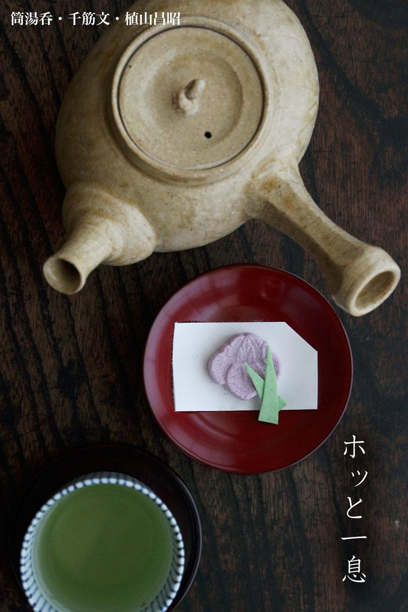 灰釉小判形急須・大・有松進|和食器の愉しみ・工芸店ようび