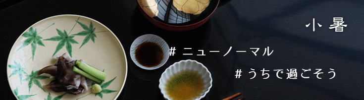 京焼:色絵青もみじ紋平向付・伏原博之・#新しい日常・#ニューノーマル