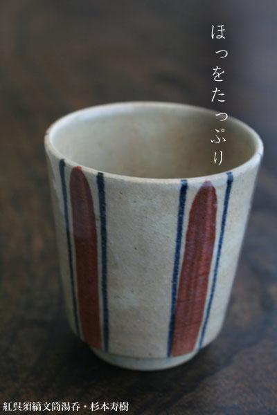 紅呉須縞文筒湯呑・杉本寿樹