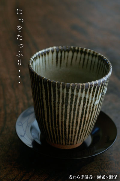 青白瓷汁注瓢形