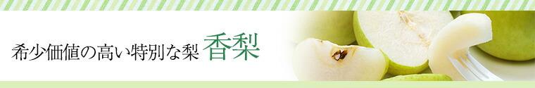 希少価値の高い特別な梨 香梨