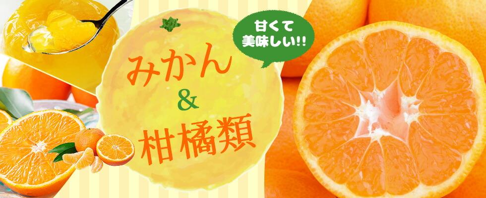 みかん&柑橘類