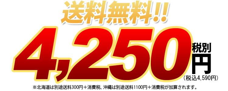 送料無料 4250円税別
