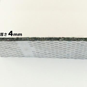 SN900-PS フェルト側。