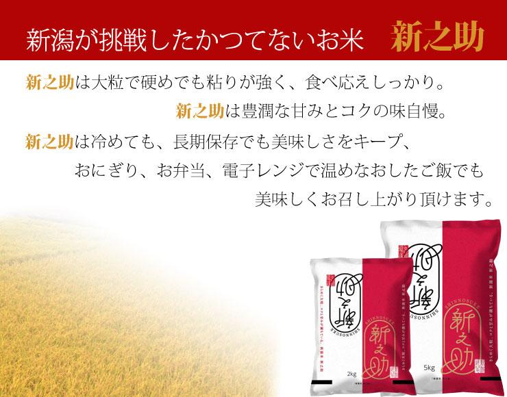新之助は新潟県が開発した新しいお米です