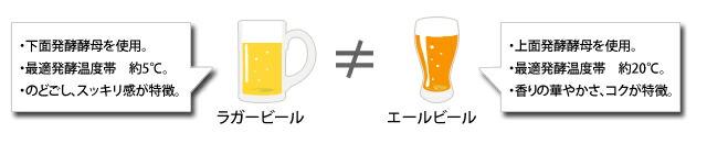 ラガーとエールビールの特徴
