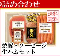 焼豚ソーセージ生ハムセット