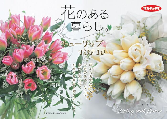 育てて切り花として楽しみましょう!