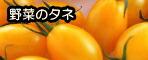 野菜の種 10%off