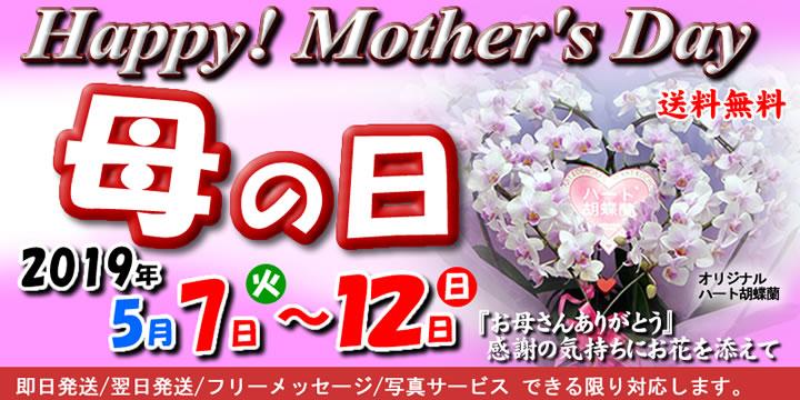 母の日スペシャルセレクション
