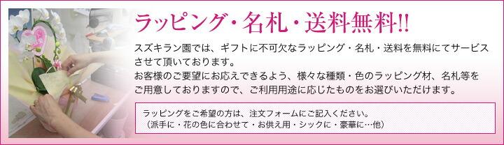 ラッピング・名札・送料無料