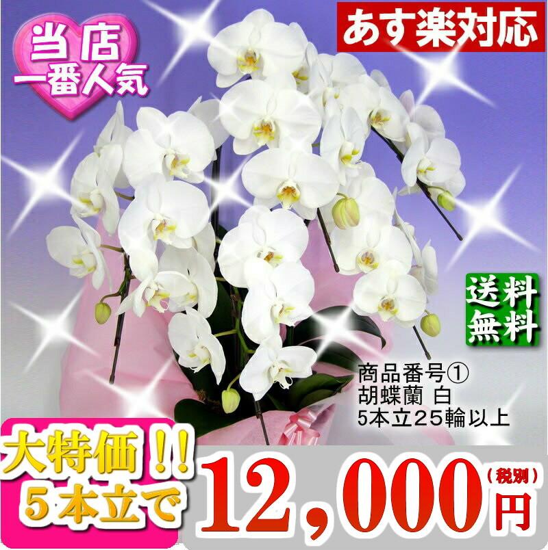 10500円