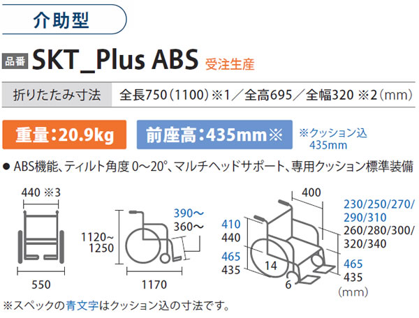 SKT_plus ABS