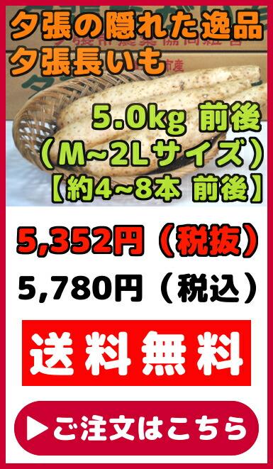 夕張長いも(M〜2Lサイズ)5kg
