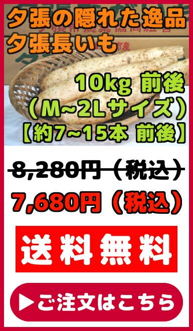 夕張長いも(M〜2Lサイズ)10kg
