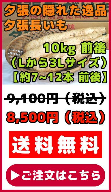夕張長いも(L〜3Lサイズ)10kg