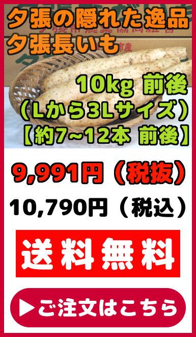 夕張長いも 10kg 前後 約7本から12本 前後 Lサイズから3Lサイズ ながいも ナガイモ 長芋