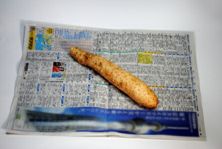 1.半分に折った新聞紙の上に長いもを置きます。