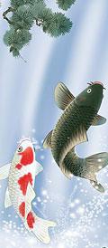 夫婦滝昇鯉