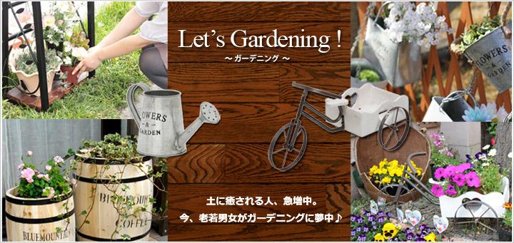 Let's Gardening