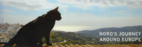 旅猫 ノロ