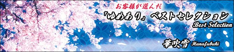 ゆめありベストコレクション/デザイナーズ障子紙01