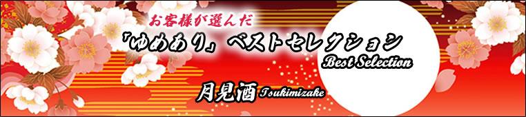 ゆめありベストコレクション/デザイナーズ障子紙04