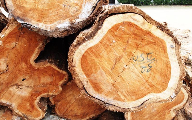 チーク材、世界三代銘木のひとつと言われる高級材