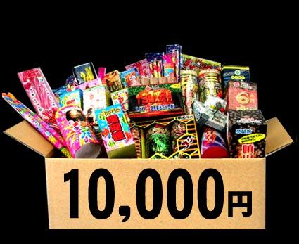 予算別!10,000円コース