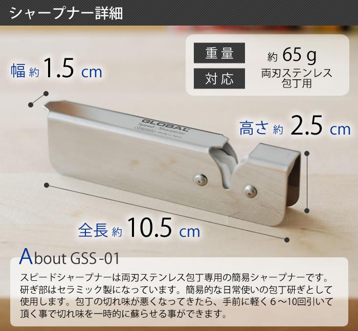 gss01_4.jpg