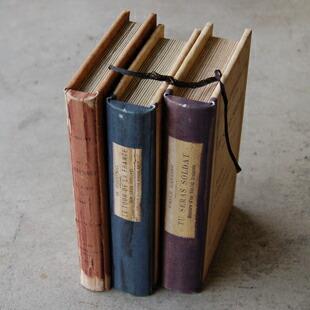大事な物を隠すなら、「本の中に入れて」本棚に。